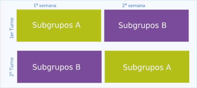 Consultas de turnos para los alumnos